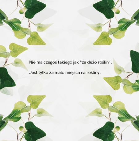 Rośliny cytat (1)
