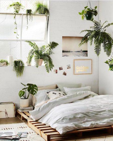 Rośliny w domu minimalistyczne wnętrza (12)