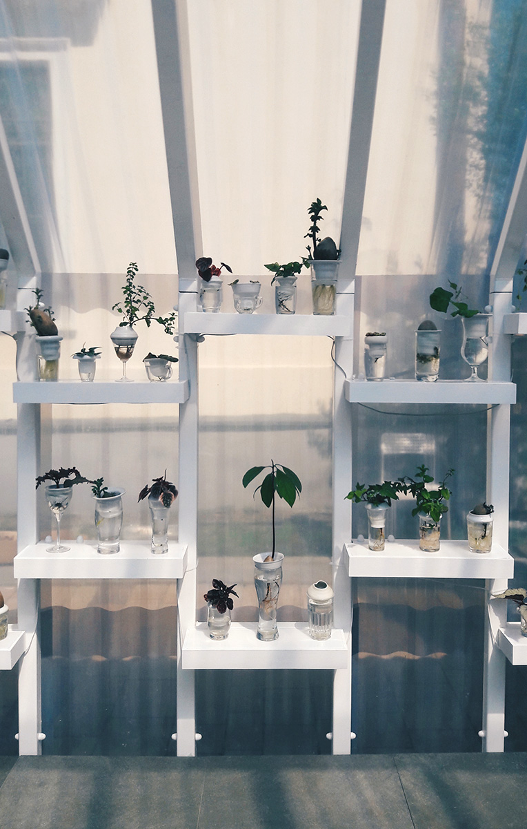 Plantacja Lodz Design (1)