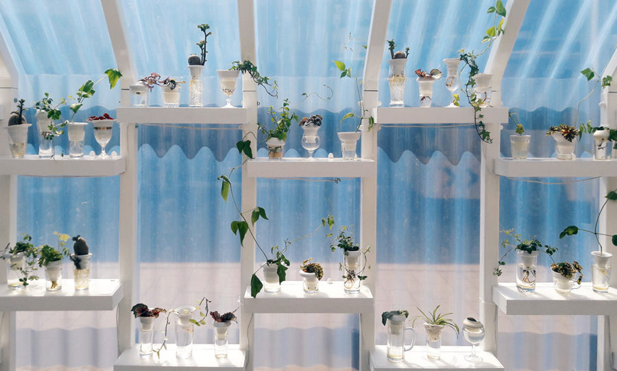 Plantacja Lodz Design (2)
