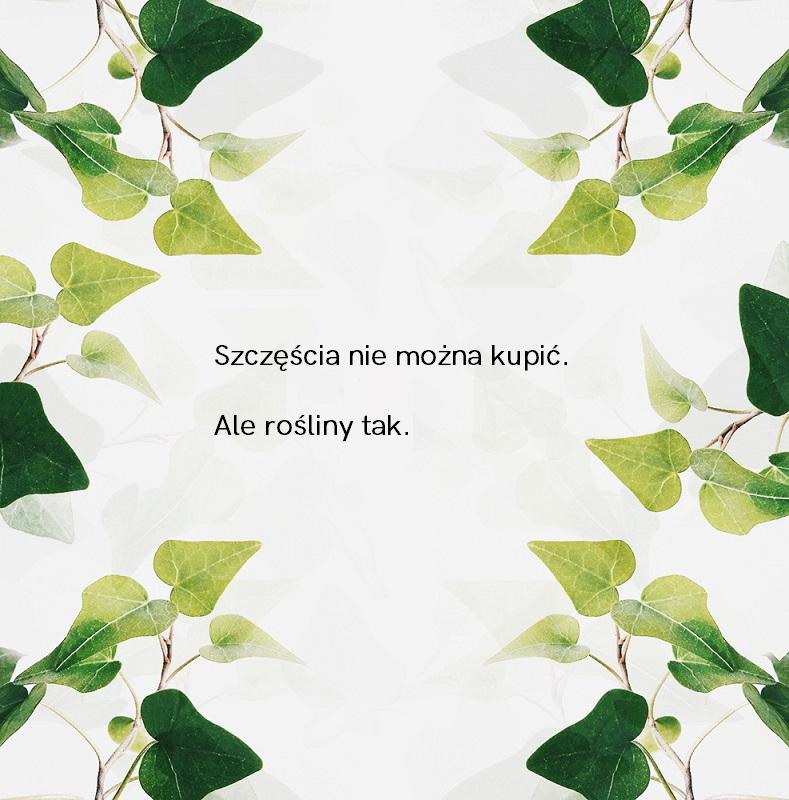 Rośliny cytat (4)