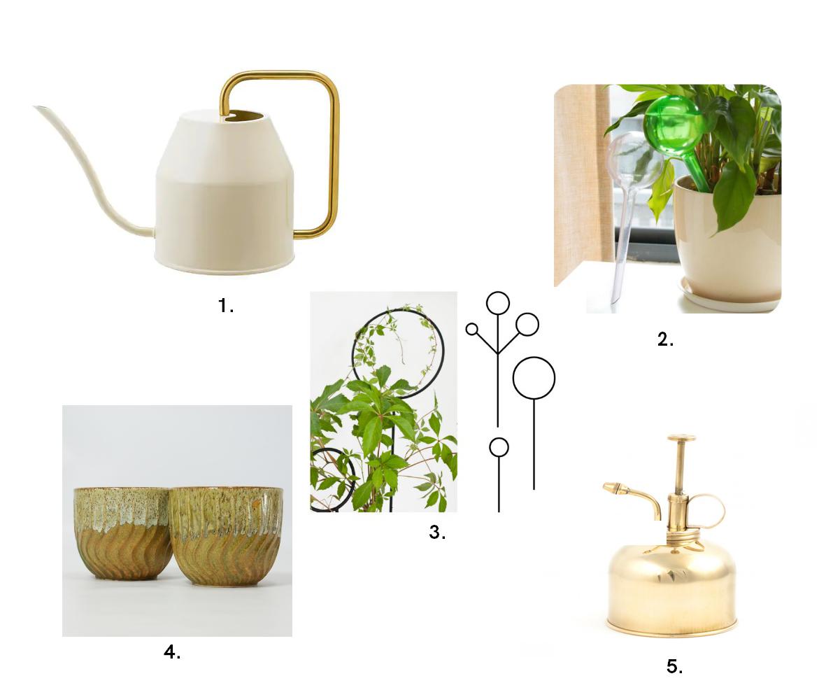 Prezenty roślinne (2)
